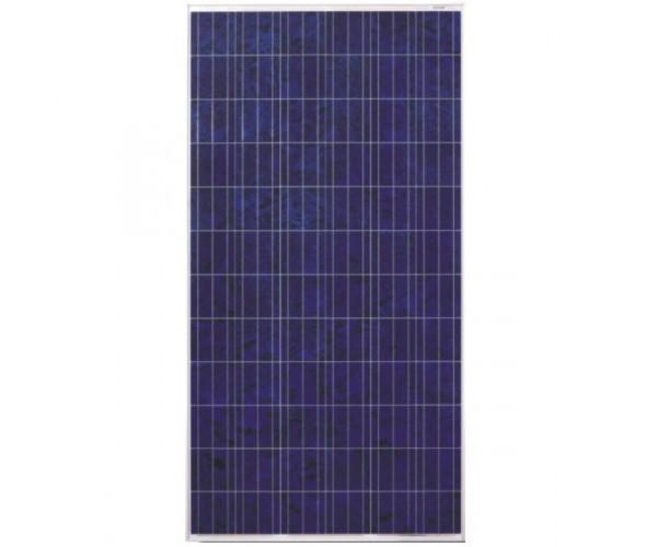 Сонячна панель Perlight PLM-300P-72 ( 300 Вт, 24В )