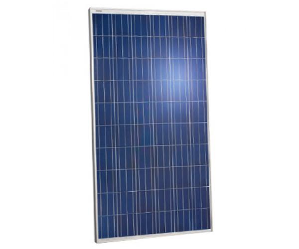Сонячна панель Jinko Solar JKM260P 260Вт, 24В